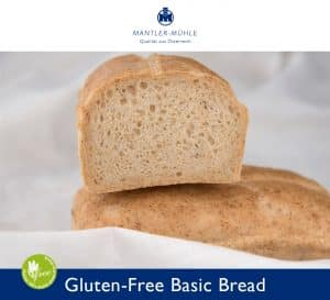 Basic Bread gluten-free