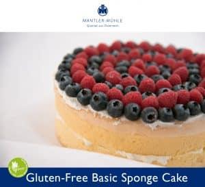 Basic Sponge Cake gluten-free