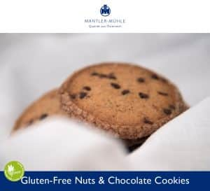 Chocolate Nut Cookies gluten-free