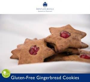 Gingerbread Cookies gluten-free